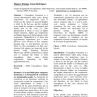 cenospheres.pdf
